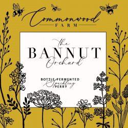 The Bannut Orchard Perry - Sarah Starkey